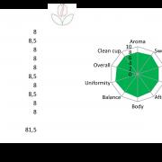 Brasil San Rafael Elements